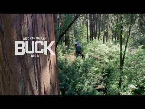 Cornell Tree Climbing Institute Explore Giant Sequoias - Full Video