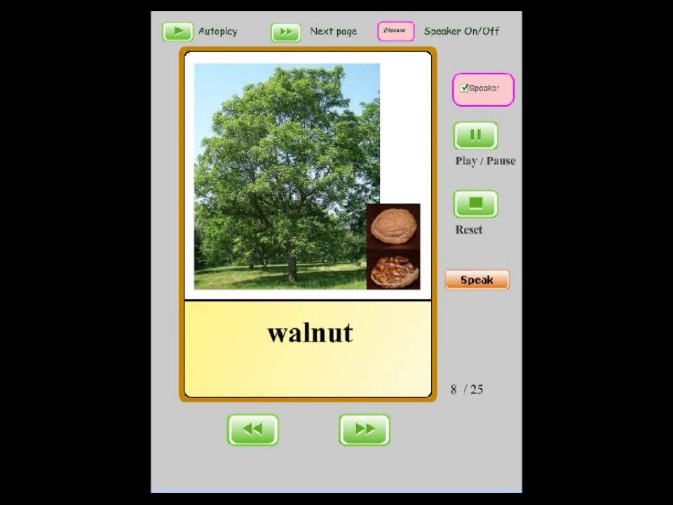 Online Audio Flashcards for Kids - Trees