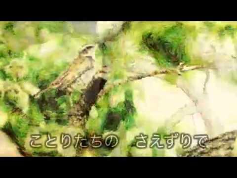 youtube:boJqOc6Hgdk