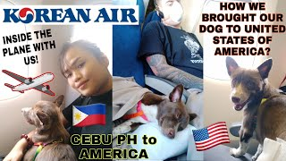 HOW TO BRING YOUR DOG TO UNITED STATES OF AMERICA FROM PHILIPPINES VIA KOREAN AIR 2020 ❤️ #PETTRAVEL