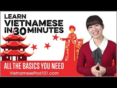 Learn Vietnamese in 30 Minutes - ALL the Basics You Need ...
