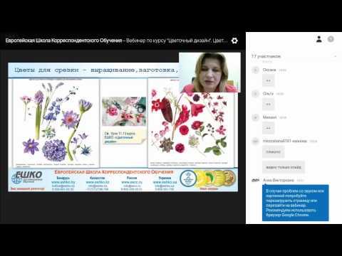 Цветочный дизайн. Цветы и фитоматериал для весенне-летнего флористического сезона 2017. Мобильная клумба