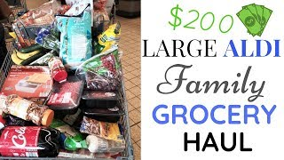 $200 Large Aldi Family of 5 Grocery Haul