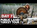 ALABAMA PUBLIC LAND GOBBLER! - Public Land Turkey Tour Day 7