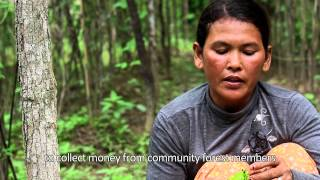 preview picture of video 'Voices of the Forest: Cambodia'
