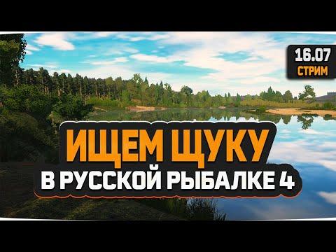 Русская рыбалка 4 — стрим в поисках щуки
