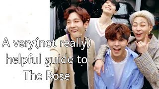 A Very(not Really) Helpful Guide To The Rose (더로즈)