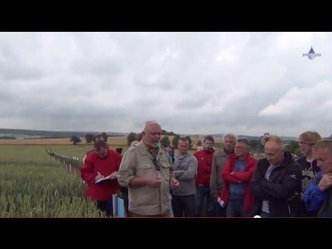 Pokusnická stanice Lukavec - Polní den ENERGEN - odrůdy pšenic