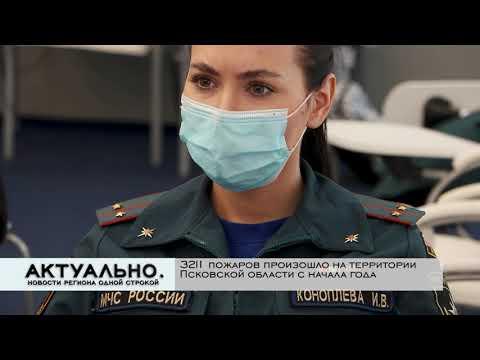 Актуально Псков / 22.10.2021