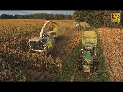 Maisernte 2018 - Maisprofis häckseln u. silieren Energiemais für Biogas plant biggest corn harvest