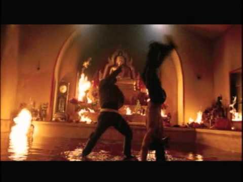 Tom Yum Gong-capoeira fight scene.wmv