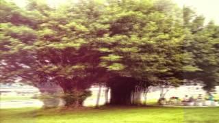 CHON - Can't Wait (HawaZD Chillout Remix)