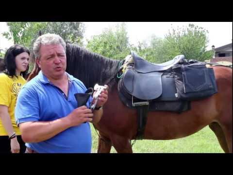 Trekking a cavallo: nelle bisacce