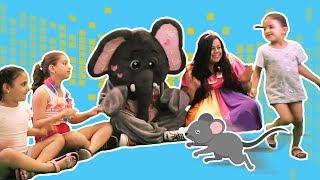 Loly & Falfool - Mouse Song  | لولي وفلفول - أركض يا فرفور