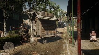 RDR2 Portable Outhouse - Is this the new Vitalism Studies Update