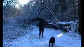 preview picture of video 'A WALK IN THE SNOW (Godalming)'