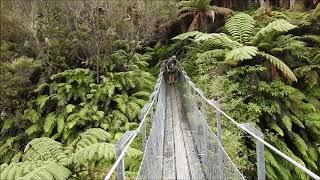 Mangapurua Valley Video