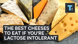 The Best Cheeses To Eat If Youre Lactose Intolerant