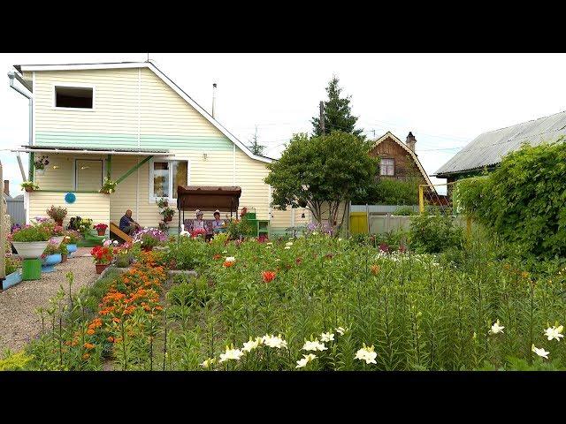Цветущий сад и клумбы от дизайнера