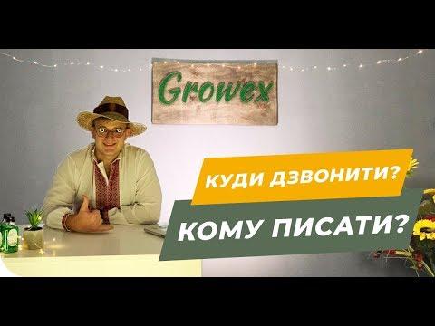 ТОП 10 способов связаться с Growex