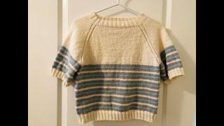 DIY KNIT Seamless Very Basic Raglan Sweater