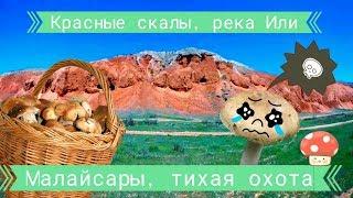 Грибное место Малайсары и красные скалы реки Или