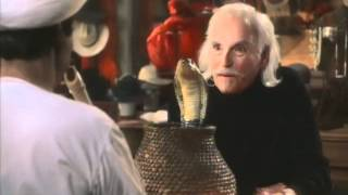 The Master of Disguise (2002) Video