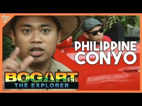 Bogart the Explorer - The Philippine Conyo