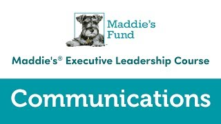 Maddie's Executive Leadership Course: Communications
