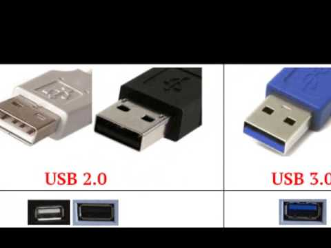 Porte di input e output - PORTA PARALLELA - La PORTA SERIALE A 9 PIN - La PORTA USB - Il FireWire