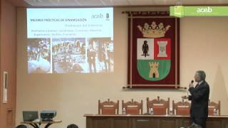 preview picture of video '150226 CONFERENCIA ACEB IDEAS 2.0 -01- Adolfo López Rausell'