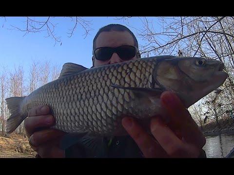 Medvedev una giacca su pesca