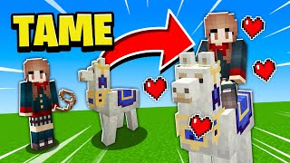 How To Tame/Ride/CONTROL/Decorate Llamas In Minecraft PE! 2017