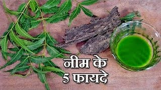 5 Neem Benefits in Hindi - नीम के लाभ - Health Tips - Download this Video in MP3, M4A, WEBM, MP4, 3GP