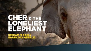 Cher & The Loneliest Elephant - Official Trailer 2021