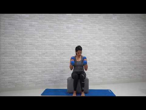 Dumbbell Seated Hammer Curls