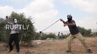 Palestyna: Palestyńscy demonstranci i siły izraelskie ścierają się po piątkowych modlitwach