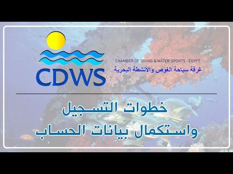 CDWS Logo