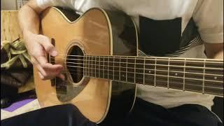 AVICII - Heart Upon My Sleeve (Fingerstyle Guitar)