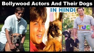 Bollywood Actors And Their Dogs In Hindi | Must Watch Video | The Ultimate Channel