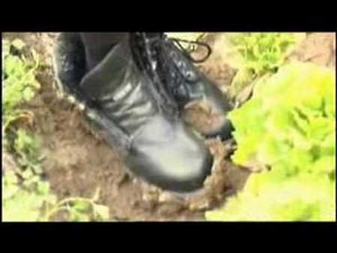 Unguenti efficaci da un fungo tra dita del piede