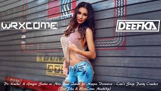 Dr. Kucho & Gregor Salto vs.Nils Van Zandt ft.Mayra Veronica -Party Crasher(DeeFka & WrxCome MashUp)