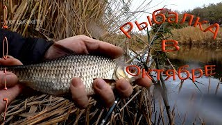 Рыбалка в октябре на реке волчье