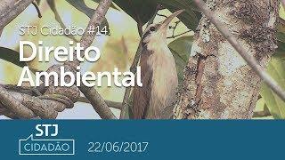 STJ Cidadão #14 - Direito Ambiental