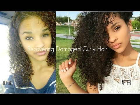 Video How to Recover Curly Hair From Heat/Color Damage | My Hair Journey | Sayria Jade