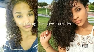 How to Recover Curly Hair From Heat/Color Damage | My Hair Journey | Sayria Jade