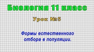 Биология 11 класс Урок 5