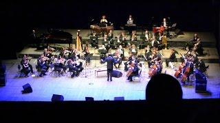 Оркестр с концерта Сафино 2014