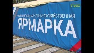 На площади Куйбышева в первый месяц осени заработала сельскохозяйственная ярмарка