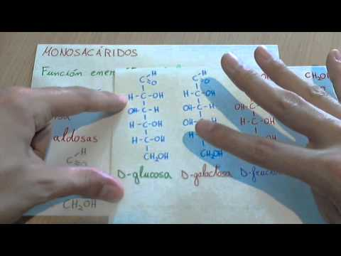 Las enfermedades de las manos la eccema